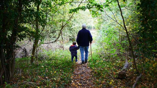 Grandparent with grandchild walking in woods